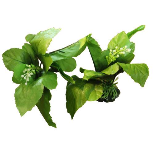 گیاه تزیینی آکواریوم مدل ۰۰۰۱ بسته دو عددی