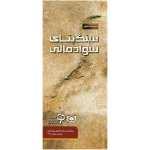 کتاب سنگ بنای سواد مالی ترجمه سودابه فرخنده انتشارات قدیانی
