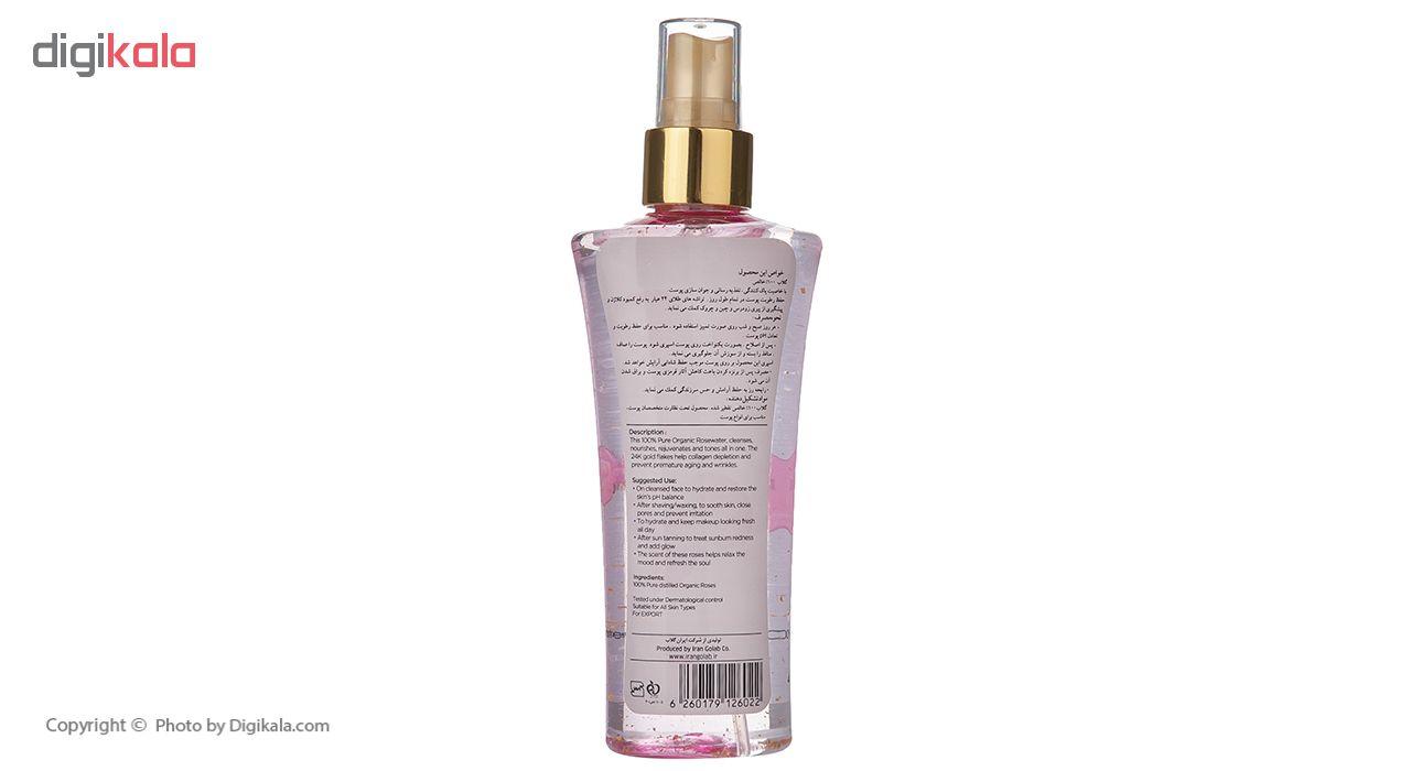 محلول پاک کننده پوست ربیع مدل  Elize Rose Water And Gold حجم 120 میلی لیتر