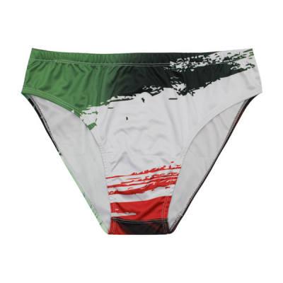 Photo of مایو مردانه طرح پرچم ایران مدل 3