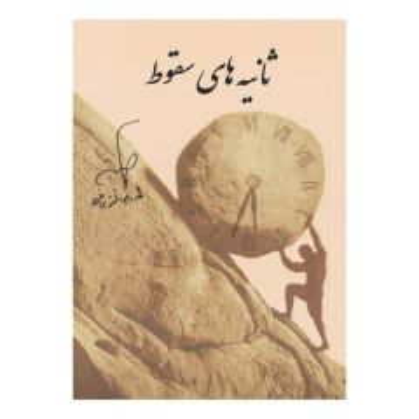 کتاب ثانیه های سقوط اثر محمدرضا تقوی فرد نشر هم قلم