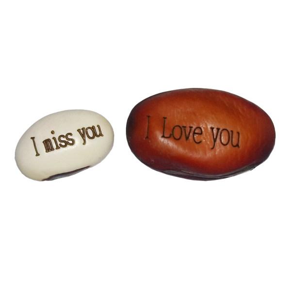 بذر لوبیا سحر آمیز مدل LOVE بسته 2 عددی