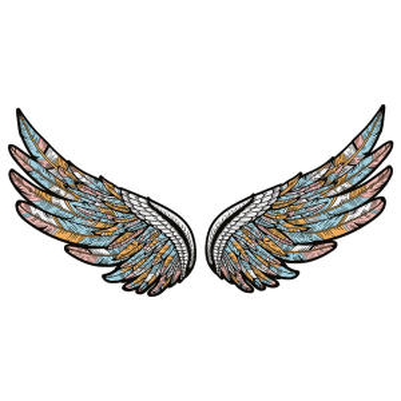 استیکر لپ تاپ طرح wings کد 01