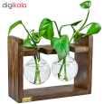 گلدان رزا مدل hydroponic 2 thumb 3
