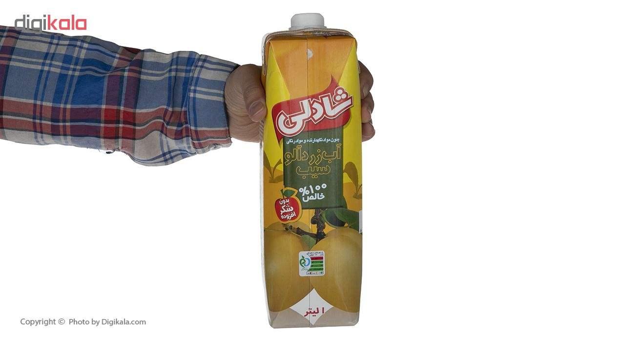 آب زردآلو سیب شادلی حجم 1 لیتر main 1 4