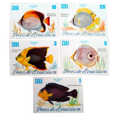 تمبر یادگاری سری حیوانات مدل fish02 مجموعه 5 عددی