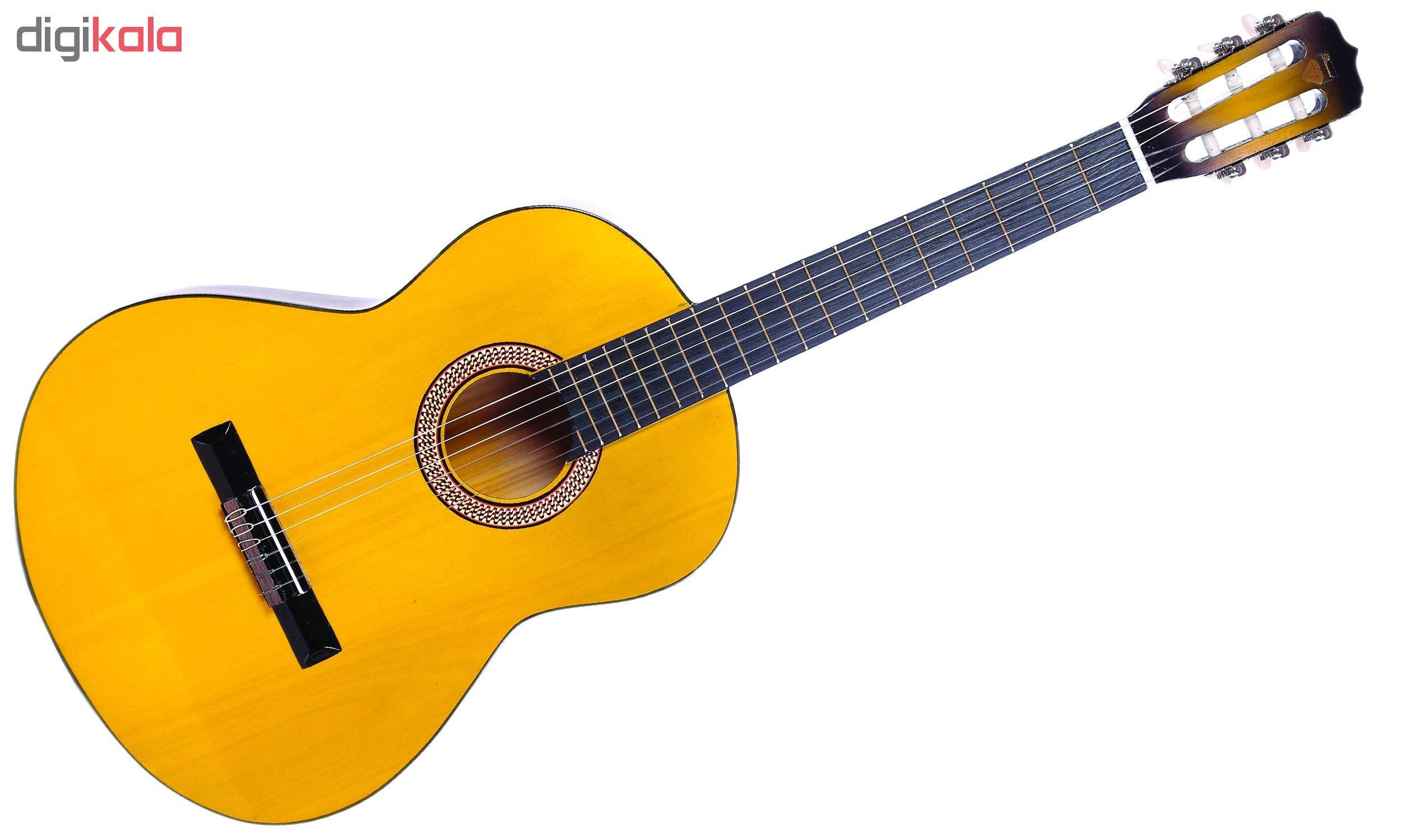 گیتار دایموند مدل TS600 main 1 3
