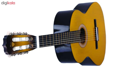 گیتار دایموند مدل TS600 main 1 4