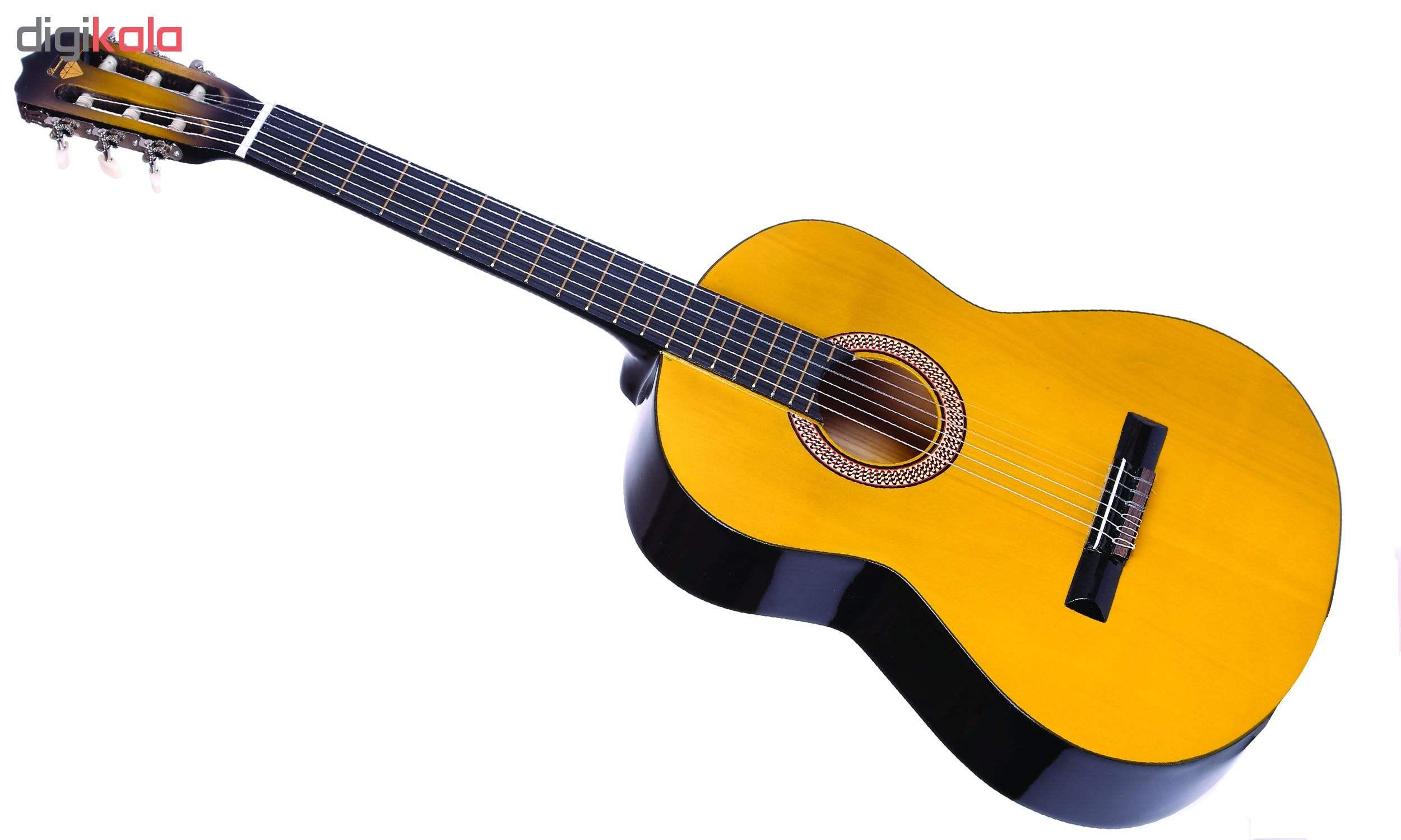گیتار دایموند مدل TS600 main 1 7