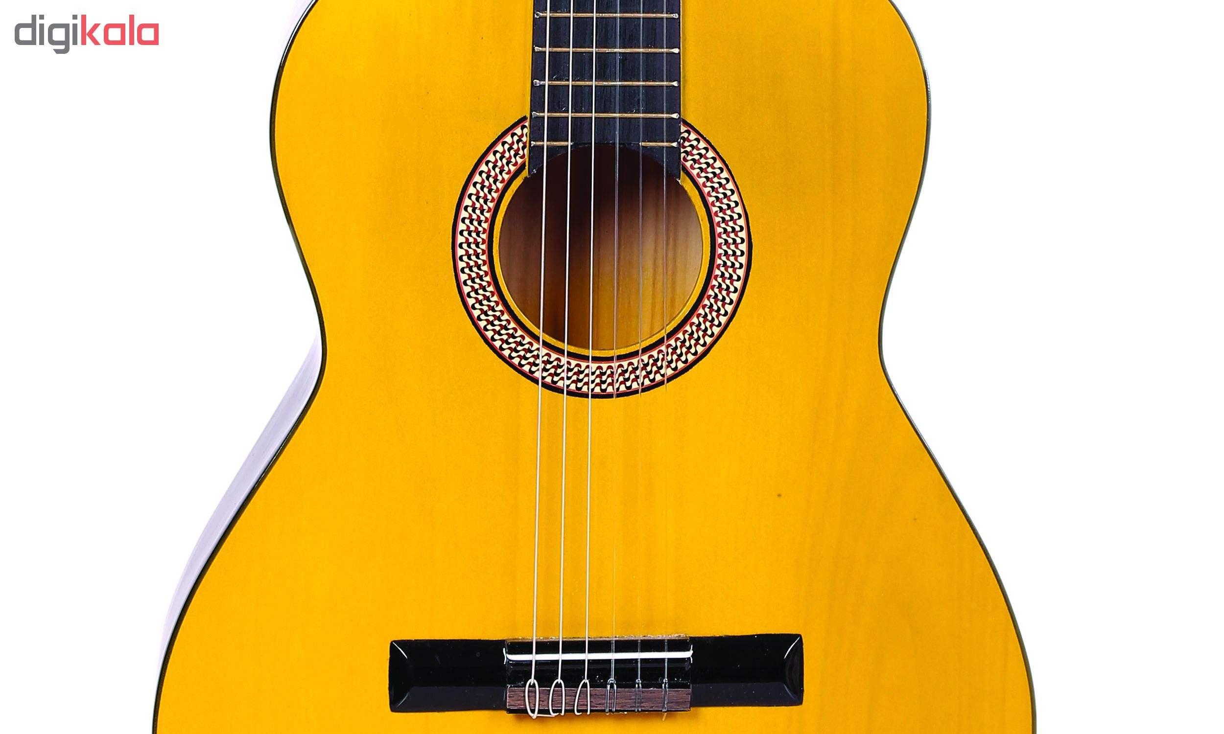 گیتار دایموند مدل TS600 main 1 9