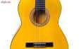گیتار دایموند مدل TS600 thumb 9
