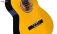 گیتار دایموند مدل TS600 thumb 10