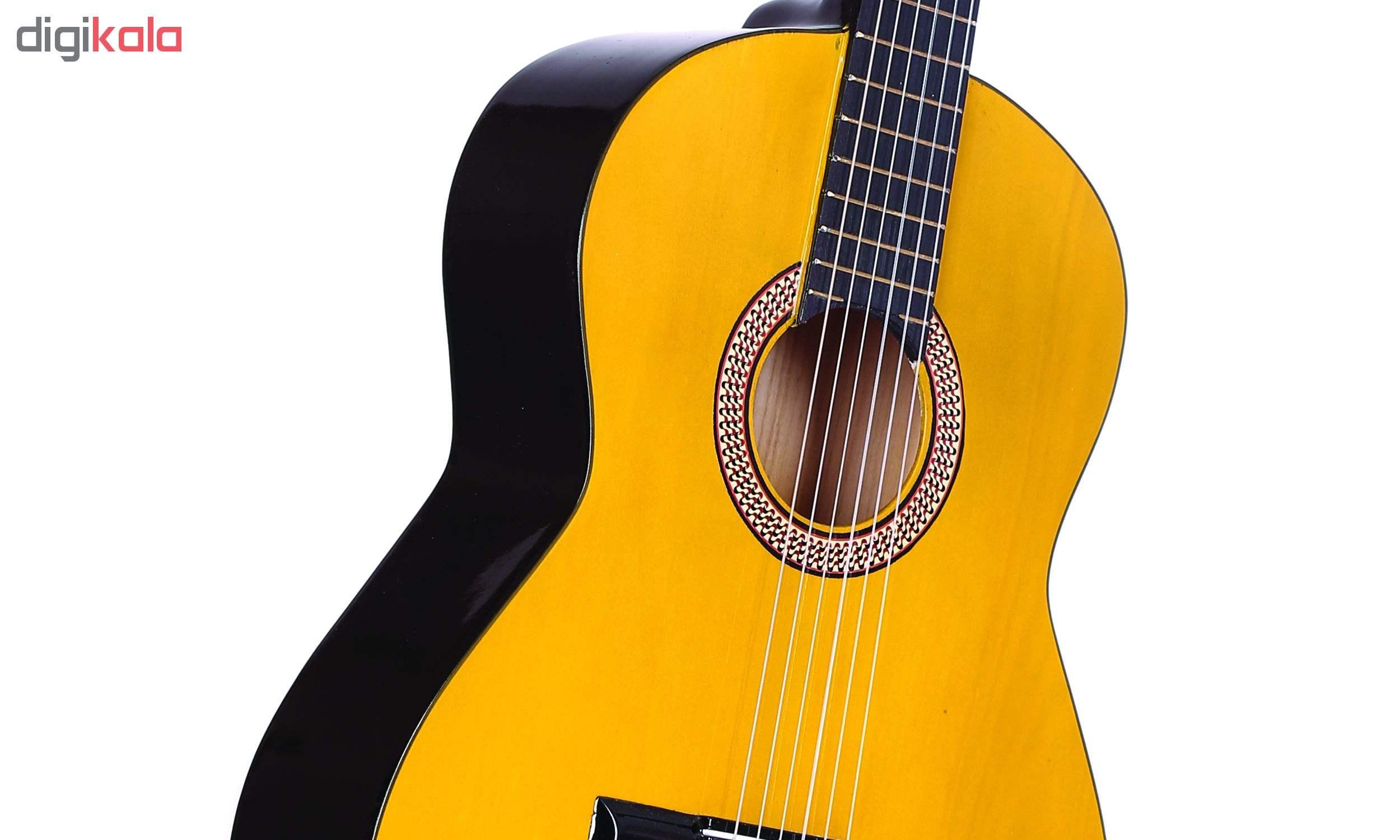 گیتار دایموند مدل TS600 main 1 13