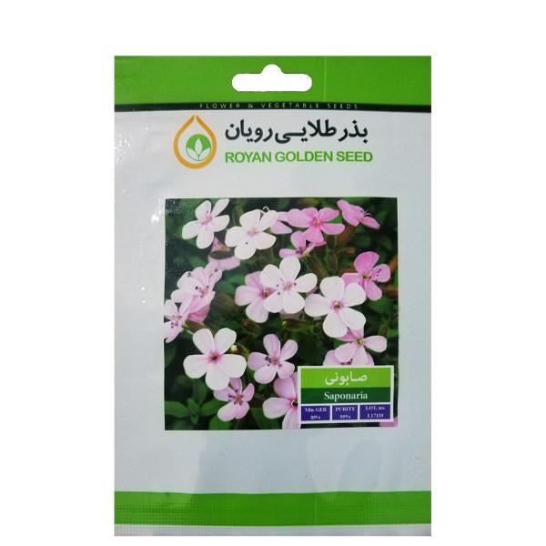 بذر گیاه دارویی صابونی بذر طلایی رویان کد BZT-110