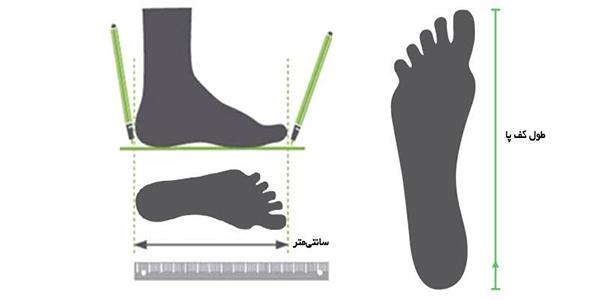 راهنمای سایز کفش ورزشی زنانه Superga